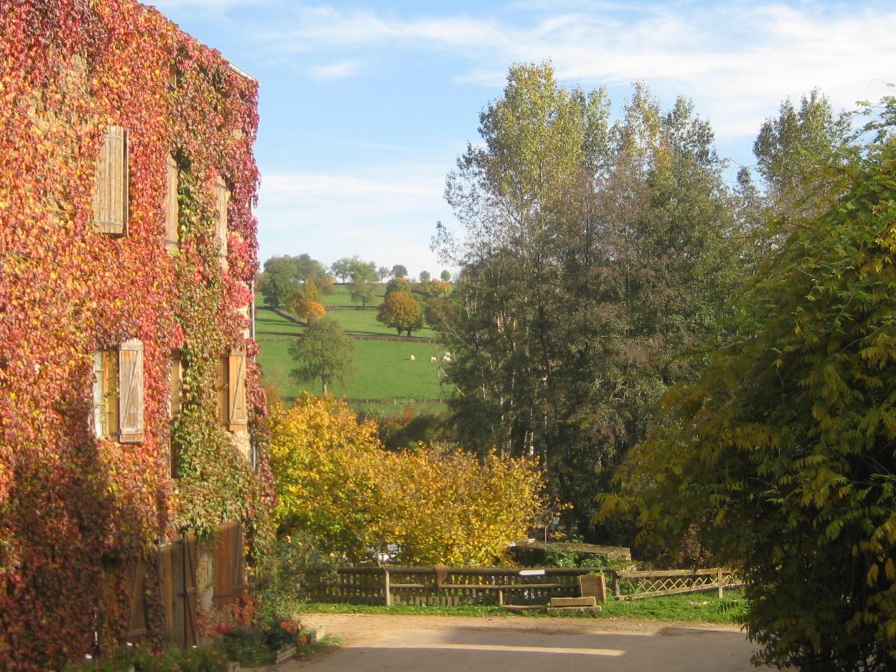 Le moulin en robe d'automne