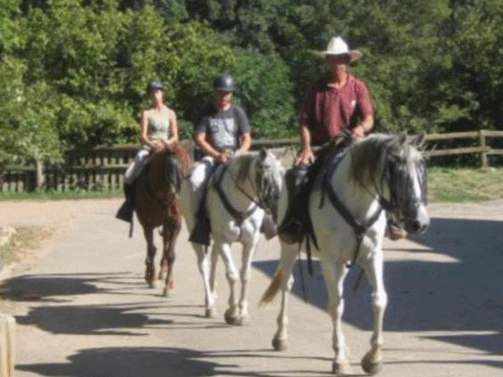 Test activites cheval